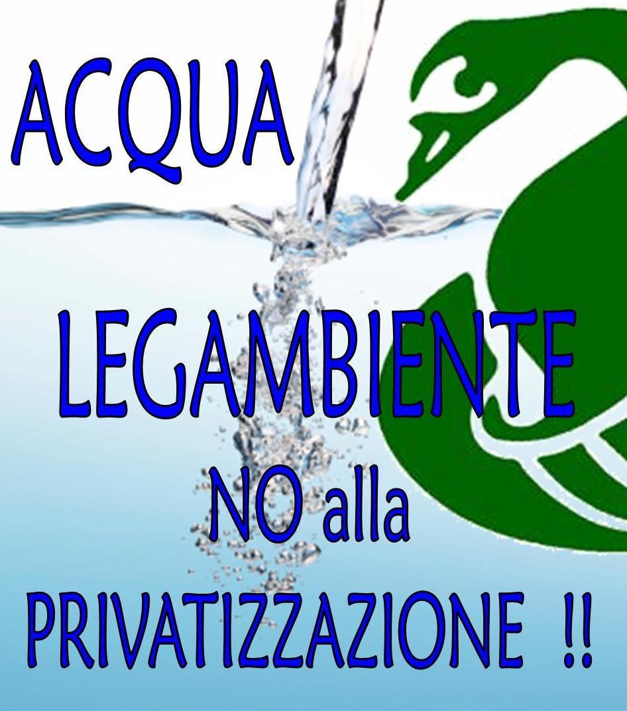 logo_acqua.jpg